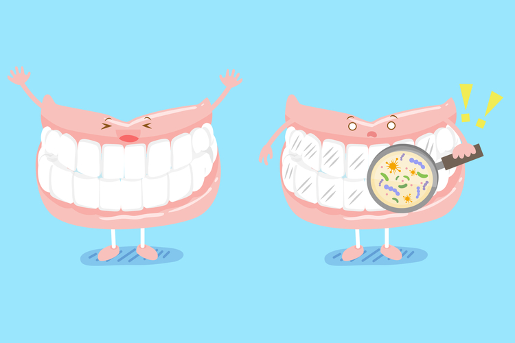 歯周病 予防